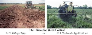 Tillage vs. Herbicides